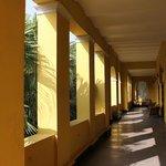 Sunny corridors