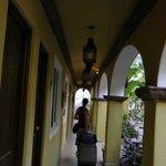 Hallway / garden area