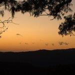 Sunrise from Binna Burra
