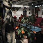 Vue générale Café des Arts