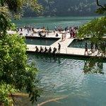 Swimming platform 2