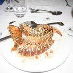 lobster buffett 2