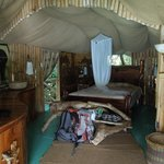 Bed in Fig Tree hut