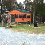 Bear's Deb cabin