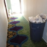 I felt they should have vacuumed the hallway carpets every day, given the fact that so much reno