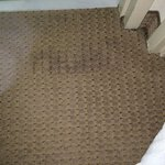 Soaked carpet