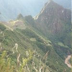 En la ladera de la montaña se ve el camino que lleva a Machu Picchu