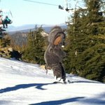Snowboarding with Woolly