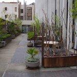 the patio area.