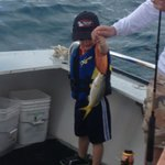 Little man with the Yellow tail