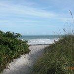 Cool path to beach.