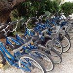Lots of bikes.