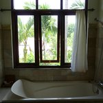 View of the gardens and rice fields from the tub