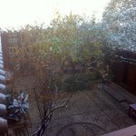 moring after a overnight snow.
