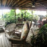 The cluttered back deck