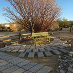Winter 2012. The property at Spin & Margie's is set up like a charming desert garden. Perfect!