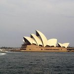 Opera-view from the parks next to Harbour bridge