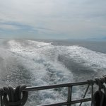 view from back of boat