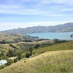 Views from Akaroa