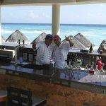 Dolphin Bar