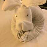 A lovely dog made by the housekeeping team