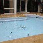 propre la piscine !!!