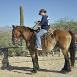 io a cavallo