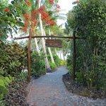 Lush tropical grounds, immactulately kept