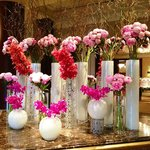 Lobby - Nice Fragrant Welcome on a Cold Day