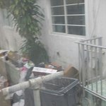 Trash outside my window