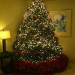 The gorgeous Christmas tree in the foyer