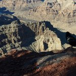 Birds eye view Grand Canyon West