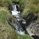 Une cascade entre deux niveaux de bassin