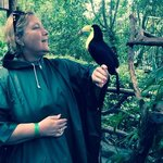 me holding a toucan