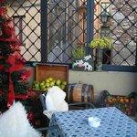 Fresh lemons next to the Christmas tree