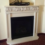 DVD and Fire place in Tuscan Room