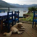 Foto de Hotel Fewa Lake