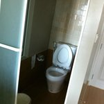 Stand Alone Toilet