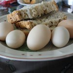 Freshly collected eggs and Elaine's home baked bread.