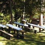 areas verdes y cocina a leña del camping