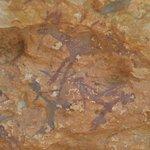 Pinturas rupestres, arte levantino
