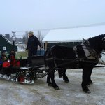 Customers from Australia enjoying a horse sled ride- Vermont Tours