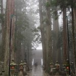 A sacred and soul searching walk towards Okunoin in Mt Koya