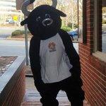 our mascot Bodacious the Bull