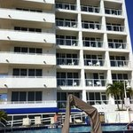 Photo de BEST WESTERN Atlantic Beach Resort
