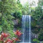 Millia Millia Falls