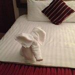 Towel folding extrordinaire
