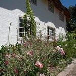 Stunning gardens, beautifully kept