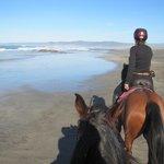 My horses ears! and Vida up ahead