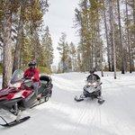 Rent Snowmobiles